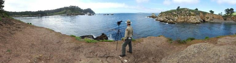 Whaler's Cove - Point Lobos SNR - April 2016