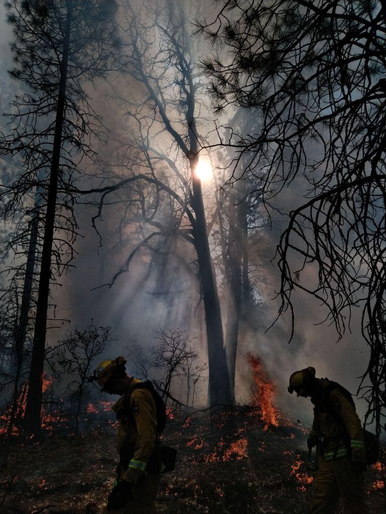 McArthur-Burney Falls Memorial SP (Clark Creek Burn 2) by Daniel Bell RESIZED